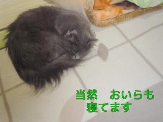YIxyO.jpg