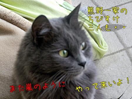 d8Ce_pCZm9ozI4I.jpg