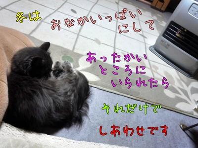 xLuUs2xrmPA6CWH.jpg