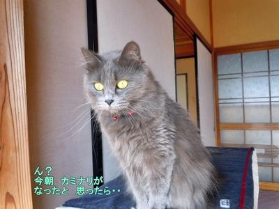 かみなり.JPG