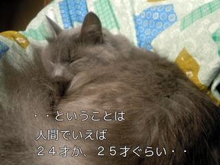 pN0Jx.jpg